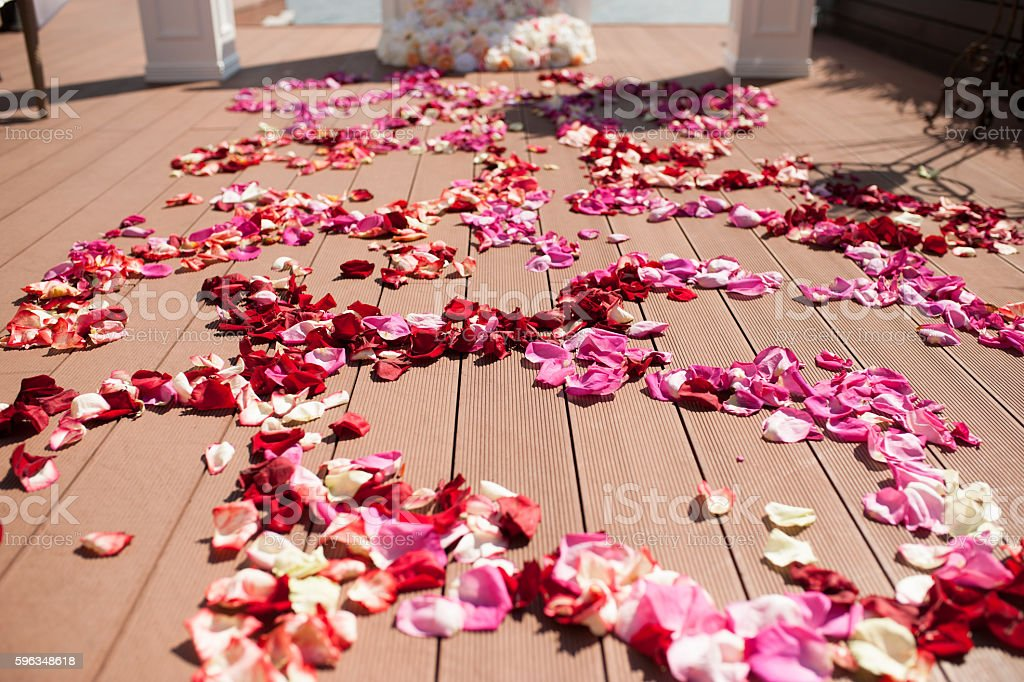 details of beautiful wedding ceremony in the park royalty-free stock photo