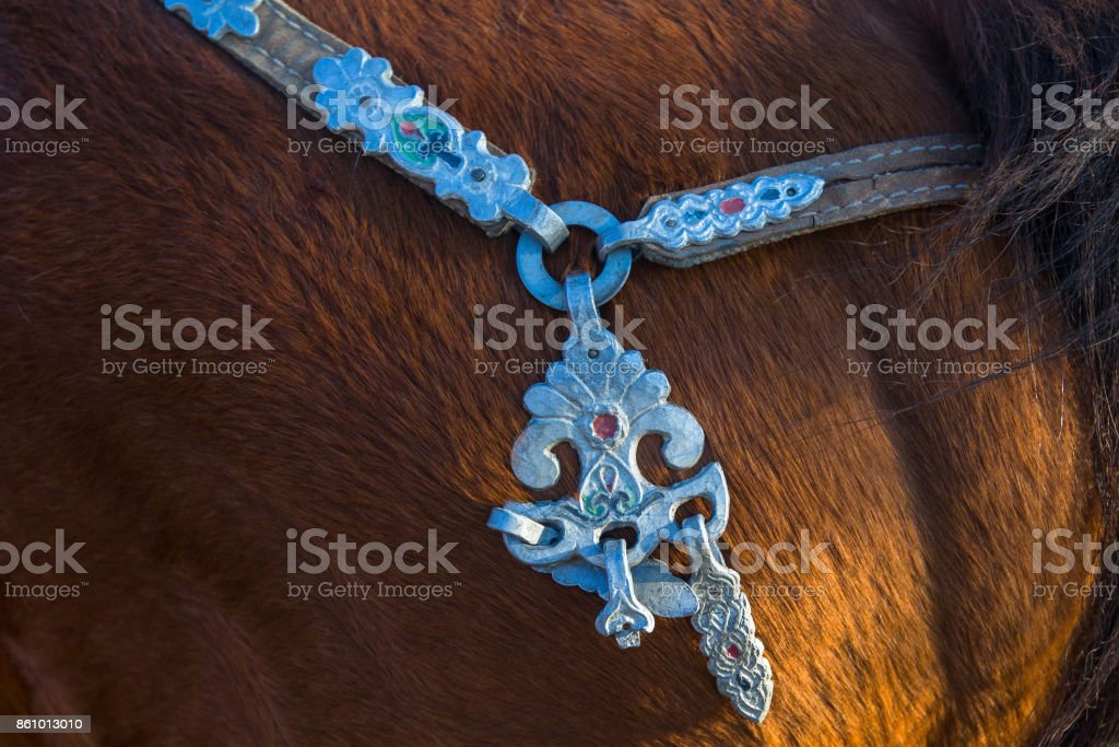 Details of the harness of Mongolian horses. stock photo