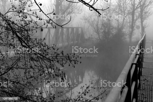 Photo of Details of two iron bridges crossing a canal. Vegetation frozen by low temperatures. Foggy day in winter. Black and white photography.
