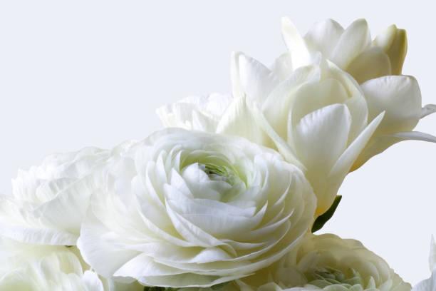 Details of wedding bouquet of freesia and buttercups picture id1132699925?b=1&k=6&m=1132699925&s=612x612&w=0&h=mmoziegutlqouybocip5ljihi5n3cu4luhbrcjv1lze=