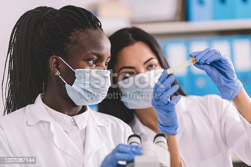Detection of the pathogen coronavirus infection in the microbiology laboratory
