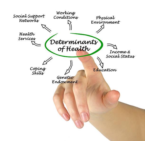 Cтоковое фото Determinants of Health