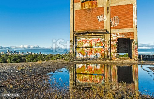 istock Detroit's Packard Plant Roof 187645629