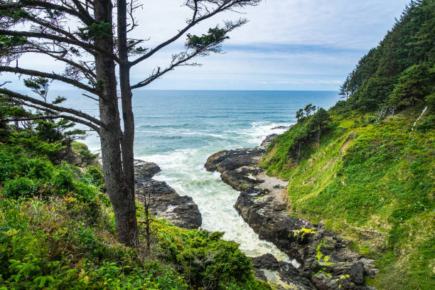 Devil's churn overlook, Cape Perpetua Scenic Area, Yachats, Oregon Coast, USA. stock photo