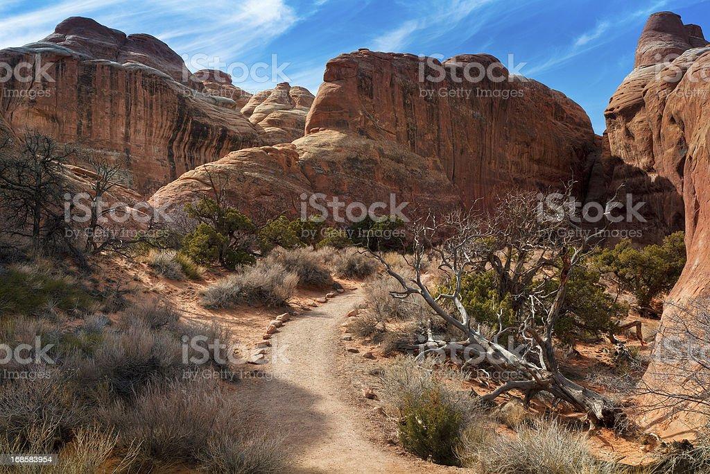 Devils Garden, Arches National Park, Moab, Utah, USA stock photo
