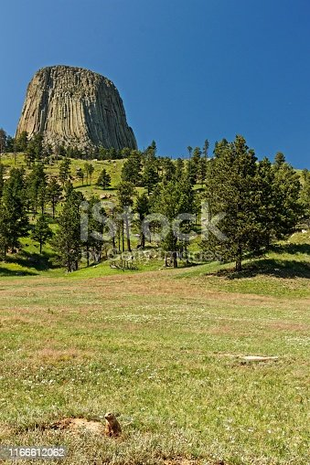 stone rock devils tower in the northeast of Wyoming