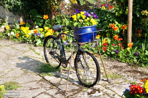 Flowers decorating an old bicycle
