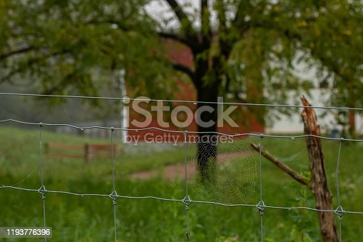 An intricate spiderweb on the pasture fence is highlighted by water droplets on a rainy morning.