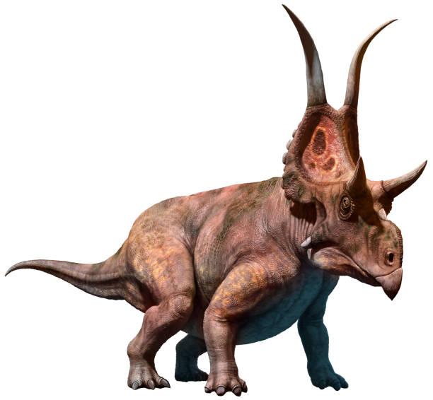 diabloceratops 3d illustration - dinosaurier illustration stock-fotos und bilder
