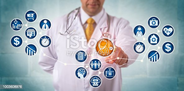 1008005294 istock photo Diagnostician Remotely Servicing Patients Via Net 1003608976