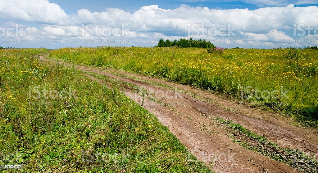 Diagonal country pathway in summer blossom field royaltyfri bildbanksbilder