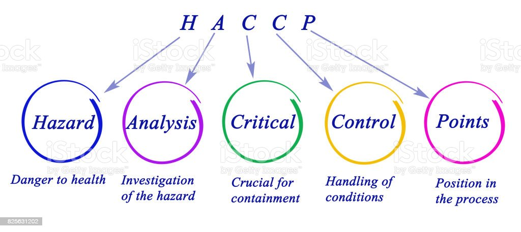 Diagram of HACCP Regulatory Requirements stock photo