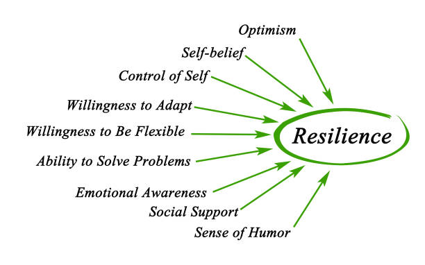 diagram of resilience - resilience concept stock photos and pictures