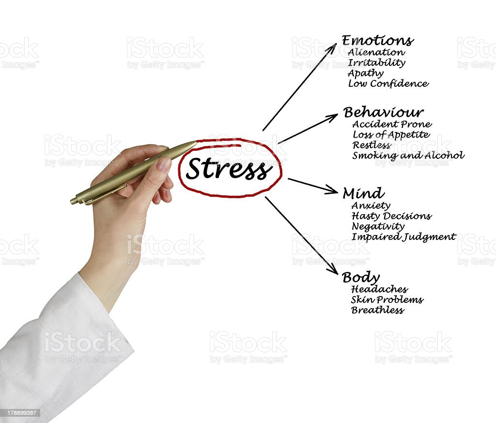 diagram of stress consequences picture id178899387?k=6&m=178899387&s=612x612&w=0&h=pvPTycFNtcGgg90GYhi7Ru 6_iVO cKFPTJWcuyagcc= skin diagram pictures pictures, images and stock photos istock