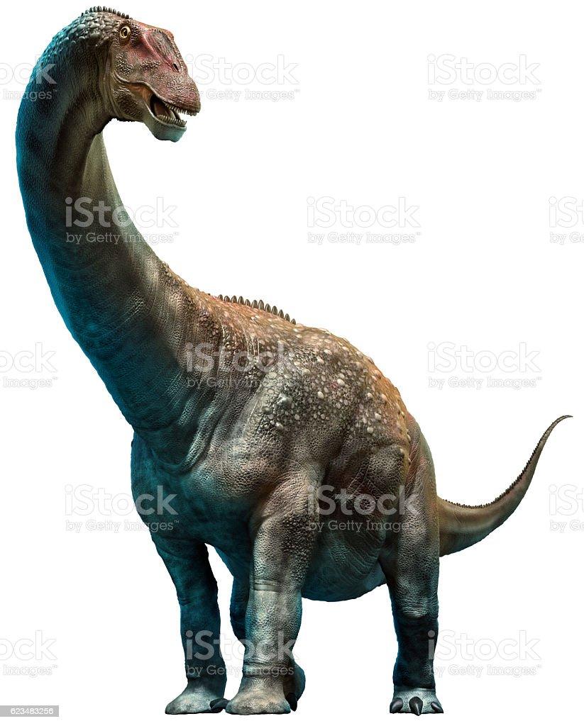 Diamantinasaurus ストックフォト