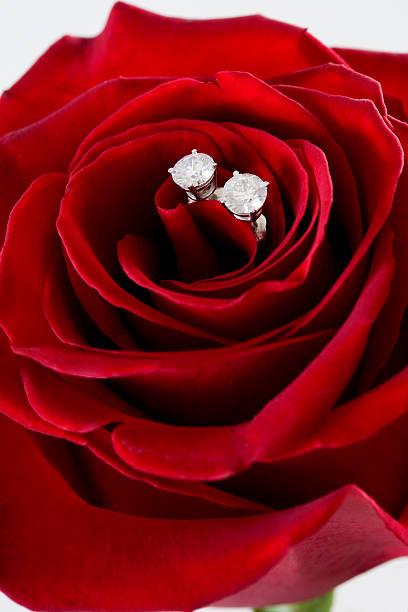diamant-ohrringe mit roter rose, platz für text für den valentinstag - ohrringe rose stock-fotos und bilder