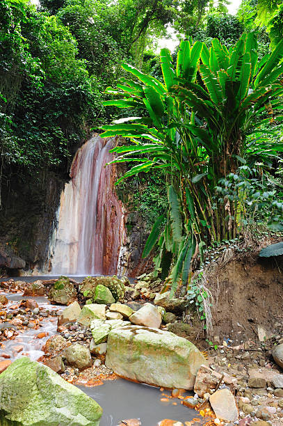 Diamond falls, St Lucia stock photo