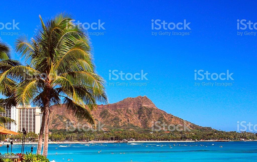 Diamond Head palm tree Pacific ocean beach scenic Oahu Hawaii stock photo