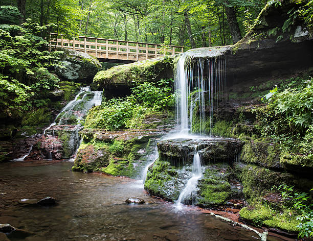 Diamond Notch Falls and Footbridge in the Catskill Mountains Diamond Notch Falls and the trail footbridge in the morning. catskill mountains stock pictures, royalty-free photos & images