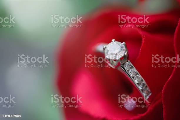 Diamond ring in beautiful blossoming rose picture id1128907908?b=1&k=6&m=1128907908&s=612x612&h=roxjzijrfb8mozw dgi2gqk2zq9ftqntiho2sj2meiw=