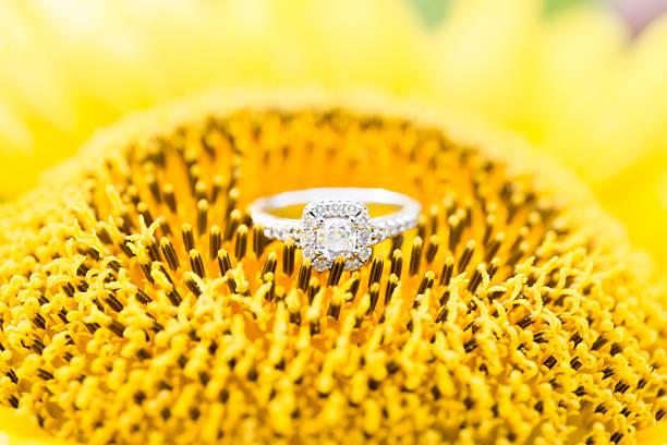Diamond ring on a sunflower stock photo