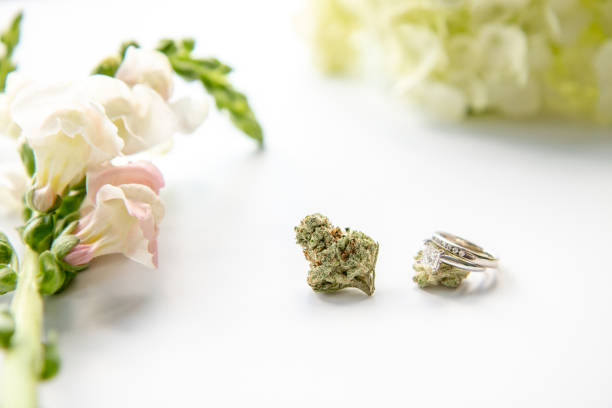 Diamond Wedding and Engagement Ring on Marijuana Bud with Pink Flowers Close Up - Cannabis Wedding stock photo