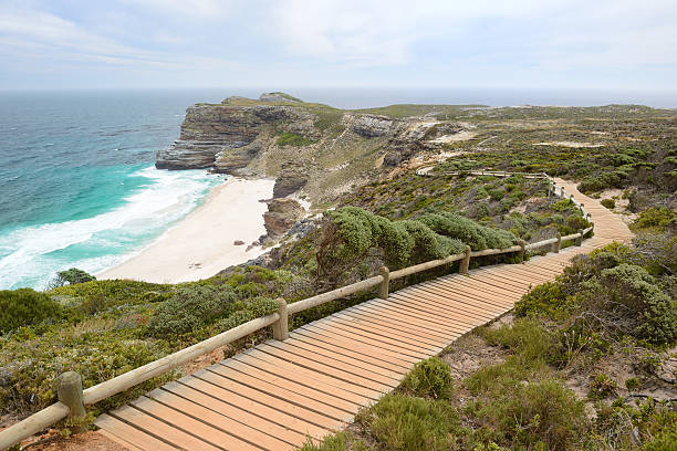 diaz beach, cape point nature preserve, south africa - nature reserve stock photos and pictures