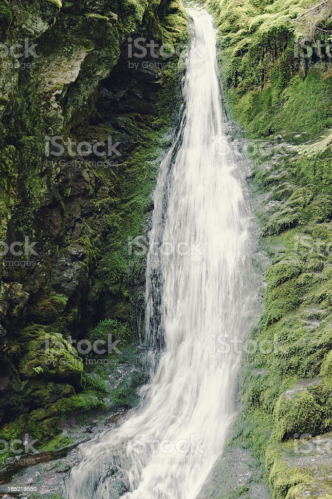 Dickson Falls royalty-free stock photo