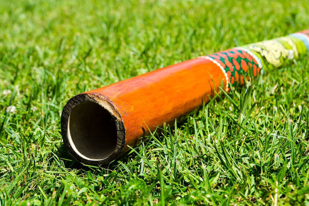 didgeridoo on the grass - didgeridoo stock photos and pictures