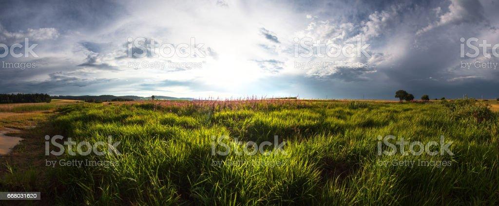 Die Schönheit der Natur im Panoramaformat stock photo