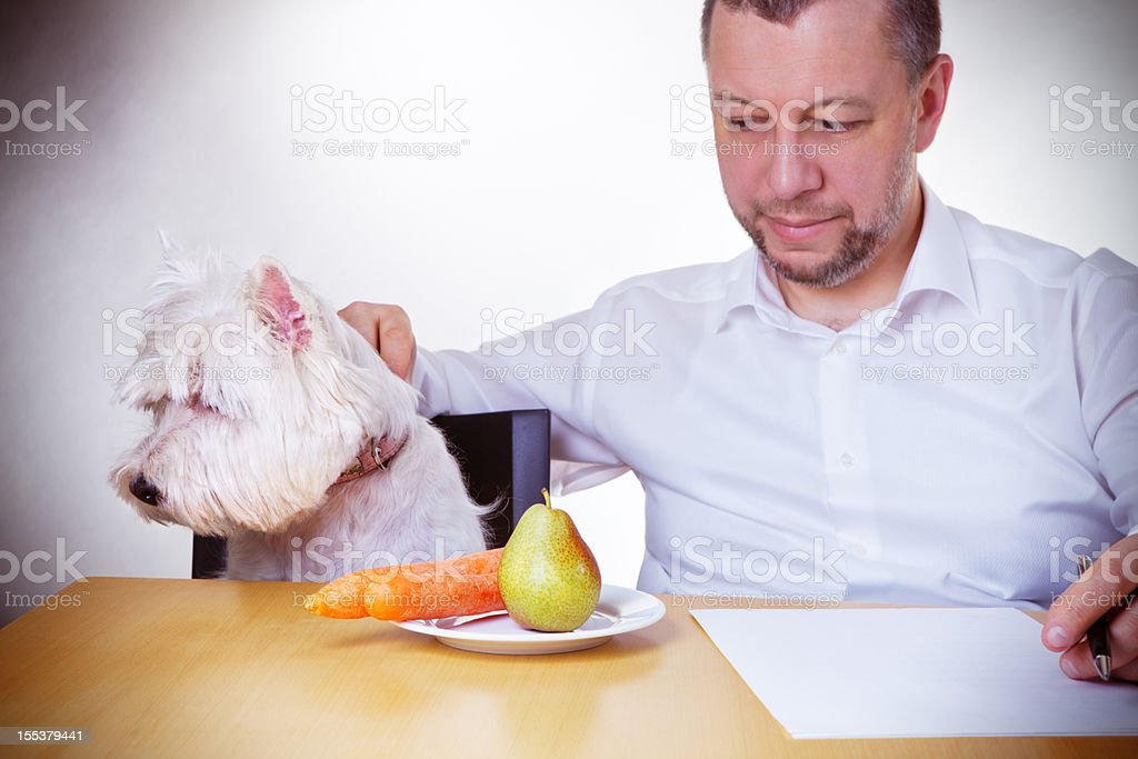 Diet for dog royalty-free stock photo