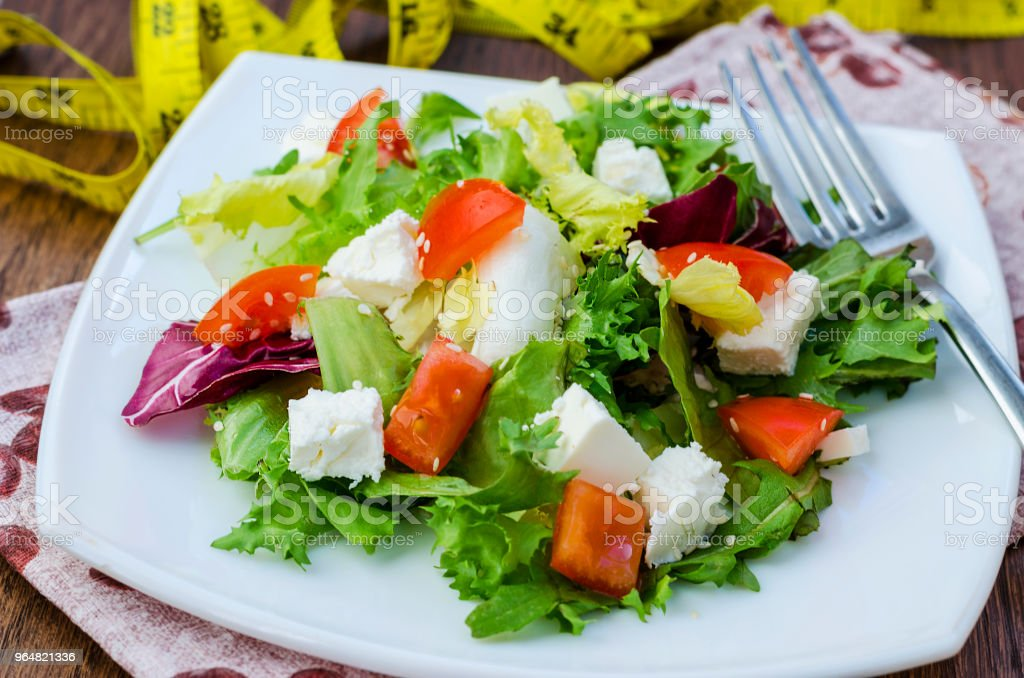 Dietary salad with tomatoes and feta cheese royalty-free stock photo