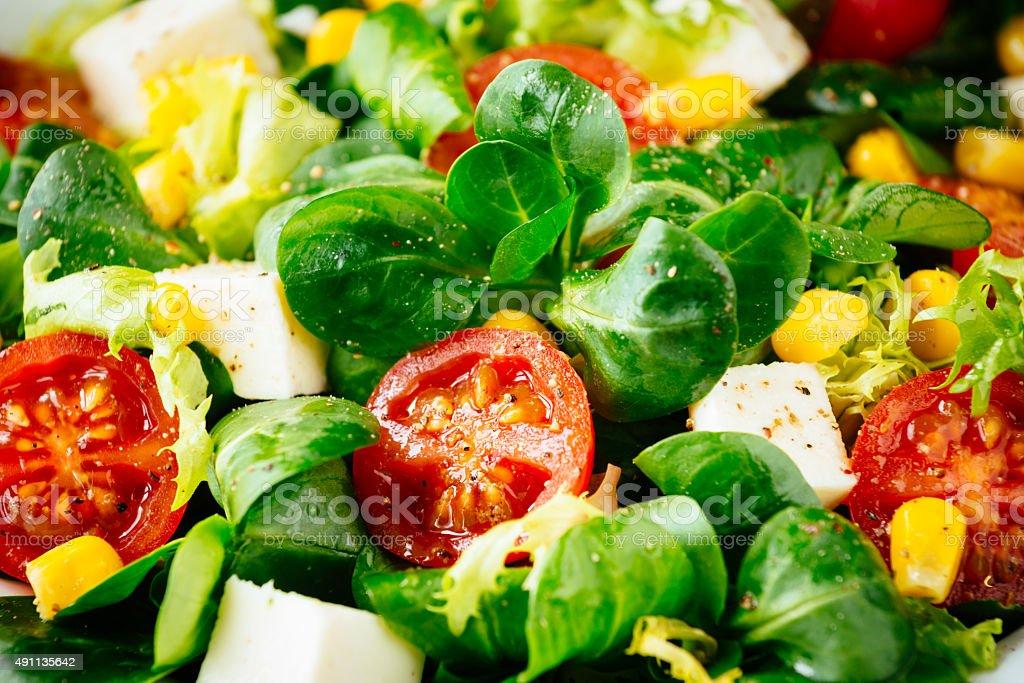 Abnehmen eine gesunde grünem Salat – Foto