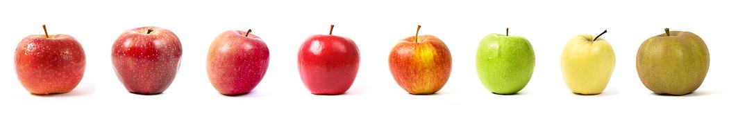 different apple varieties on white background studio shot