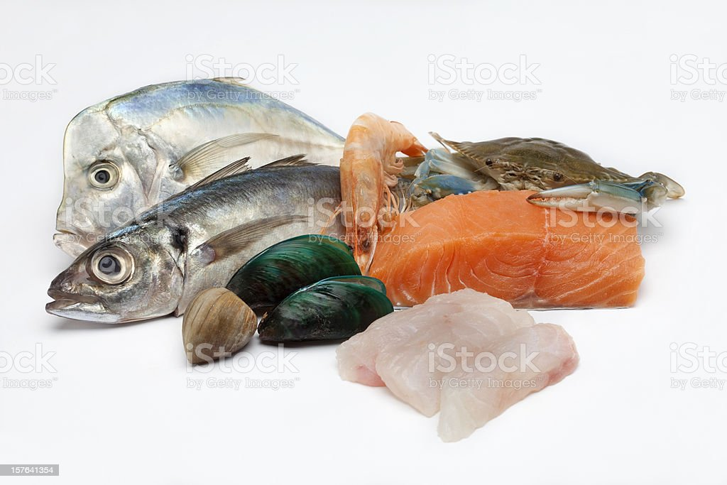 Different array of fish and fish filet on white background stock photo