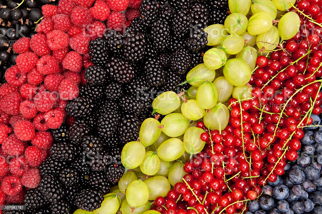 different berries rich in vitamins royalty-free stock photo