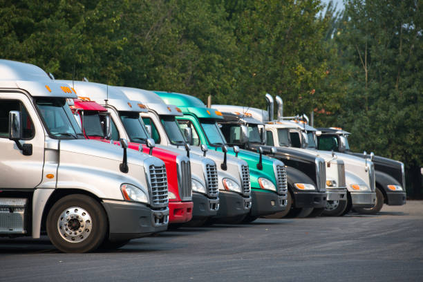 Different Big rig semi trucks tractors stand in row on parking lot with green trees stock photo