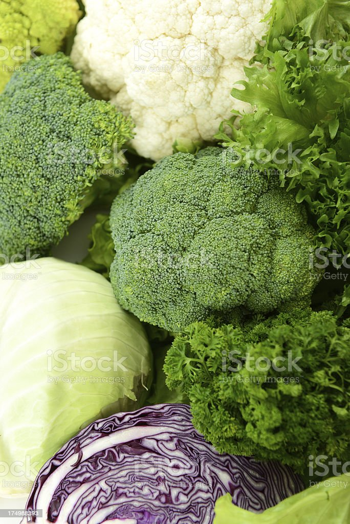 different cabbage stock photo