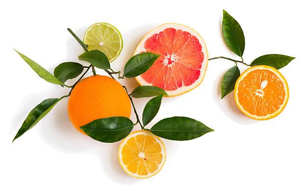 Different  citrus fruits on a twig. - foto de stock