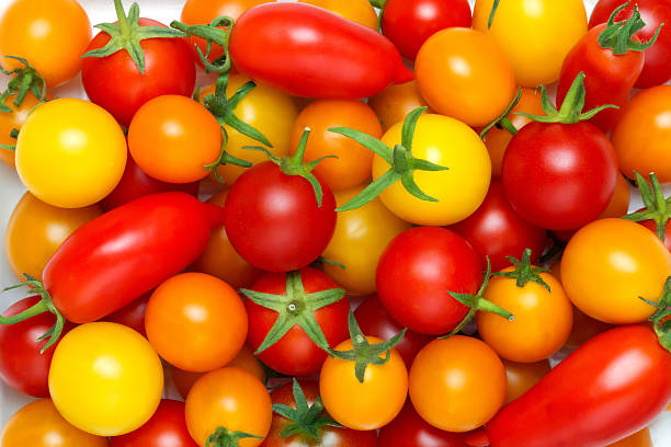 Different color tomatoes background picture id627042482?b=1&k=6&m=627042482&s=612x612&w=0&h=515krartw e1cmqbcaoahx35t3kuhajjzkmrojc7zba=