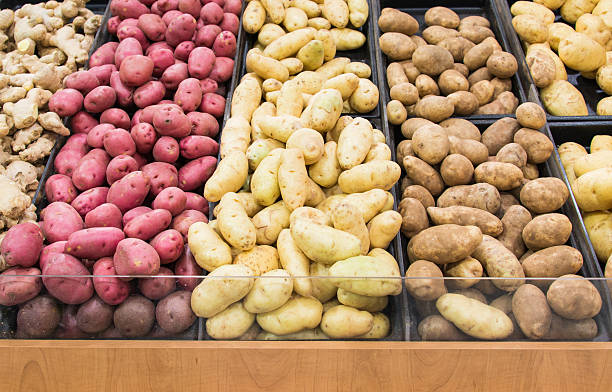 Different colors and varieties of potatoes in a grocery store Grocery store displays different colors and varieties of potatoes for people to select their favourite, agricultural produce arranged in lines. raw potato stock pictures, royalty-free photos & images