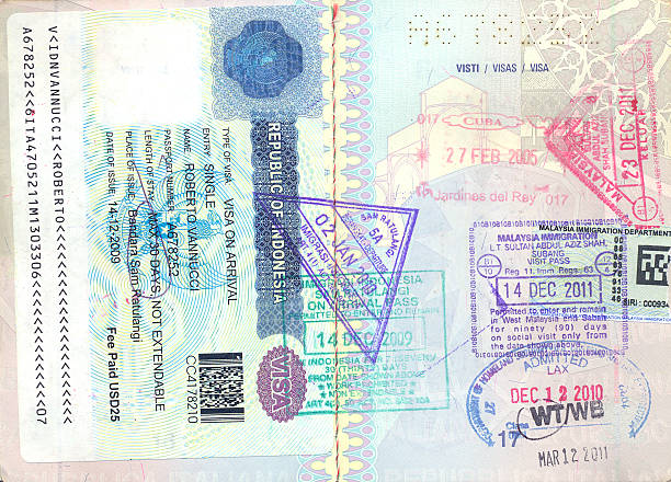 Different foreign visas on European passport