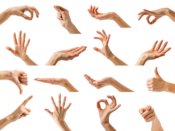 Different hand gestures stock photo