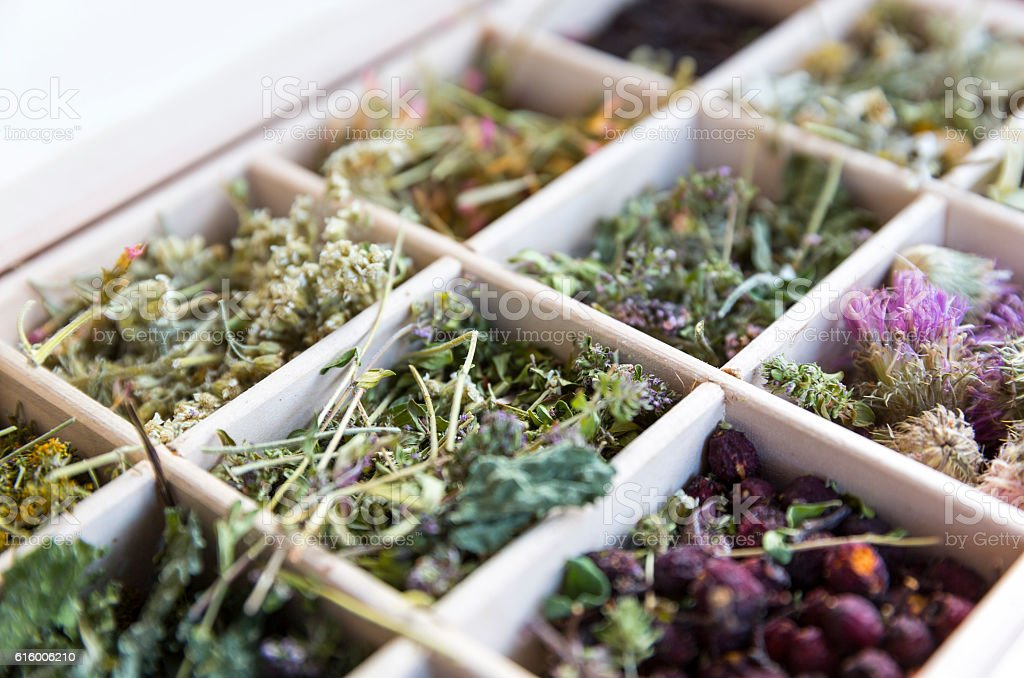 Different herbs in a wooden tea box stock photo