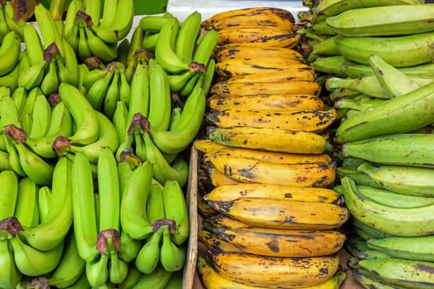 Verschiedene Bananen – Foto