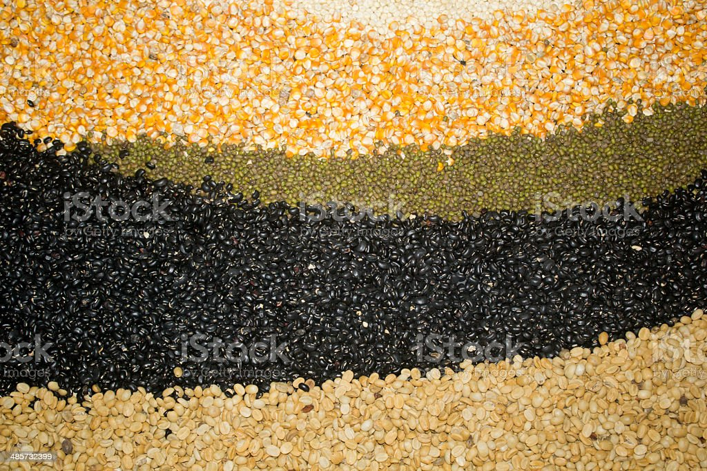Different kinds of bean seeds royalty-free stock photo