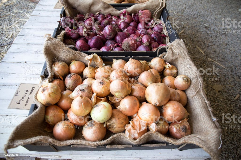 Different kinds of onions on the maketstall stock photo