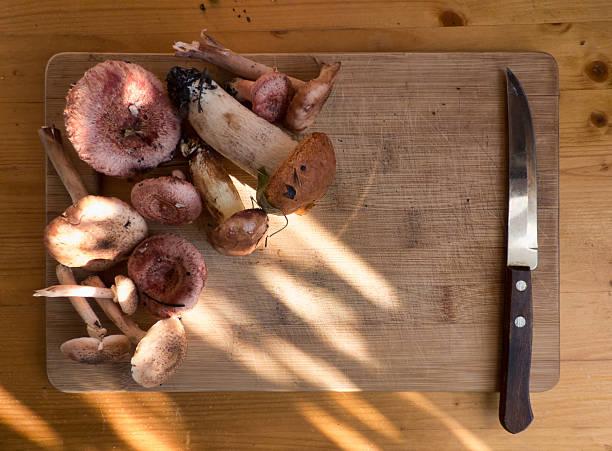 different mushrooms and knife on wooden board - schwarzwurzeln kochen stock-fotos und bilder