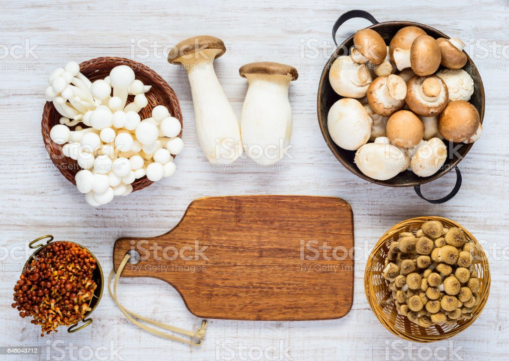Different Mushrooms in Top View stock photo