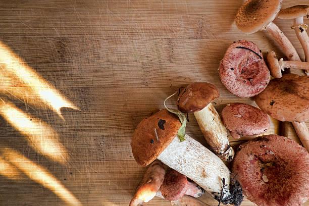 different mushrooms on wooden background - schwarzwurzeln kochen stock-fotos und bilder
